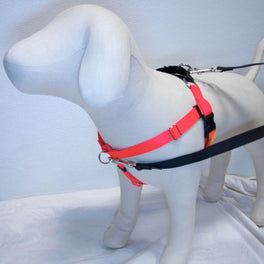 2 Hounds Design Freedom No-Pull Dog Harness - Neon Orange/Black