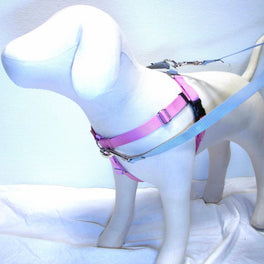 2 Hounds Design Freedom No-Pull Dog Harness - Rose Pink/Silver