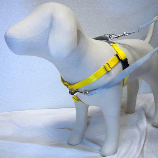 2 Hounds Design Freedom No-Pull Dog Harness - Yellow/Silver