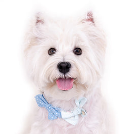 Hey Cuzzies Bow Dog Necklace (Blue)