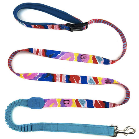 HiDREAM Profusion Multifunctional Dog Leash (Mountain Stamp) - Kohepets