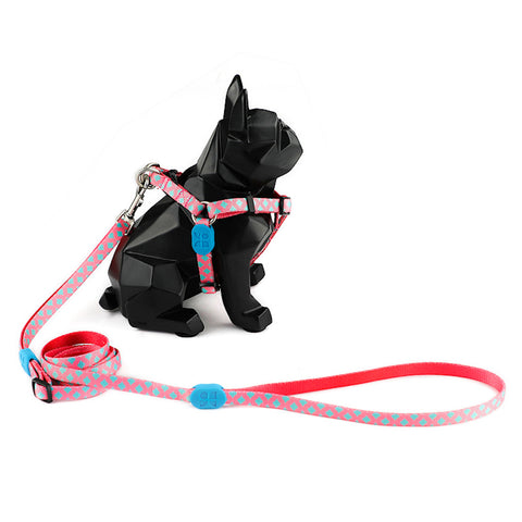 Hidream Profusion Y-Harness & Leash Set For Dogs (Bobby) - Kohepets