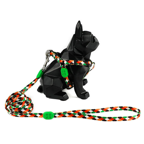 10% OFF: Hidream Profusion Y-Harness & Leash Set For Dogs (Pop Art) - Kohepets