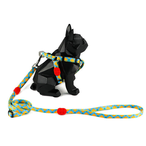 10% OFF: Hidream Profusion Y-Harness & Leash Set For Dogs (Sunrise) - Kohepets