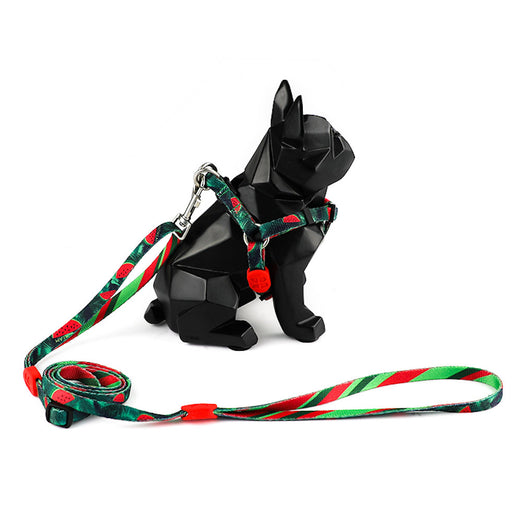 Hidream Profusion Y-Harness & Leash Set For Dogs (Watermelon) - Kohepets