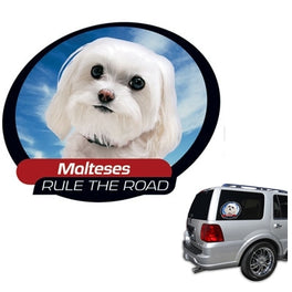 Pet Tatz Maltese Car Window Sticker