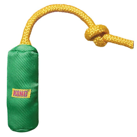 KONG Funsters Cylinder Dog Toy - Kohepets