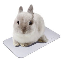 Marukan Cool Aluminium Plate For Rabbits