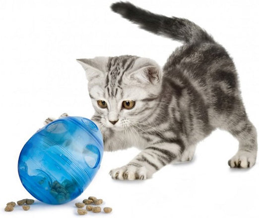 PetSafe Egg-Cersizer Treat Ball Interactive Cat Toy