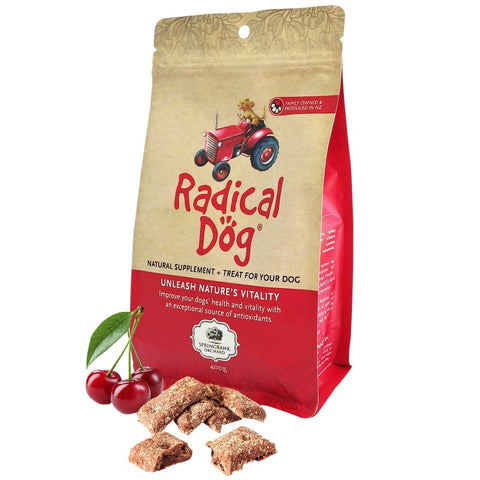 20% OFF: Radical Dog Natural Cherry Biscuit Dog Treats 400g