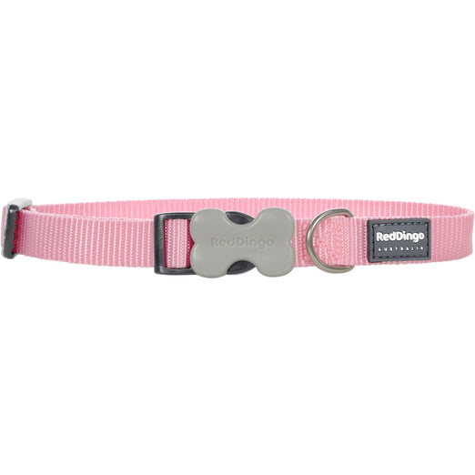 Red Dingo Classic Dog Collar 12mm - Kohepets