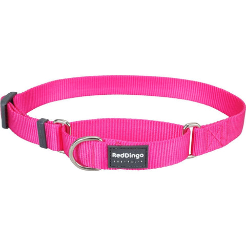 Red Dingo Classic Martingale Dog Collar 12mm - Kohepets