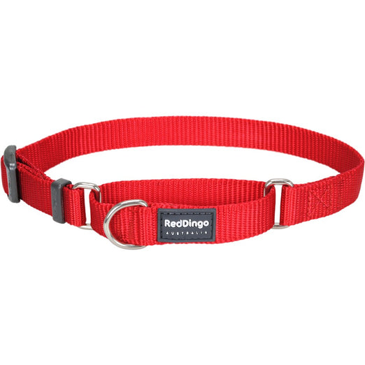 Red Dingo Classic Martingale Dog Collar 20mm - Kohepets