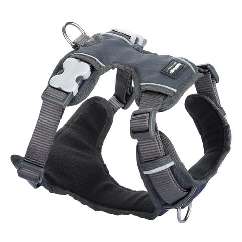 Red Dingo Padded Dog Harness (Small)