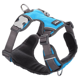 Red Dingo Padded Dog Harness (Extra-Large)