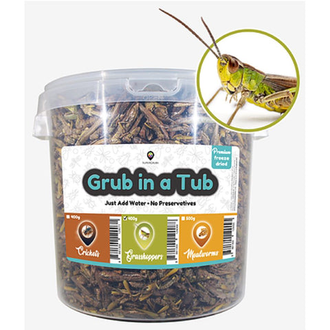 SuperGrubs Freeze-Dried Grasshoppers Small Pet Food 400g - Kohepets