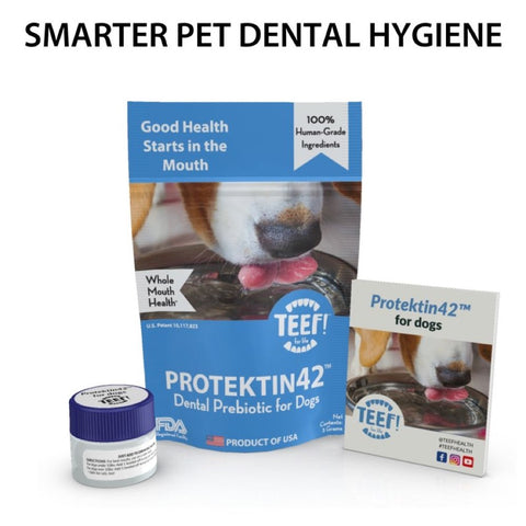 20% OFF: Teef! Protektin42 Dental Prebiotic for Dogs - Kohepets