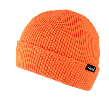 Planks Essentials Beanie 2020
