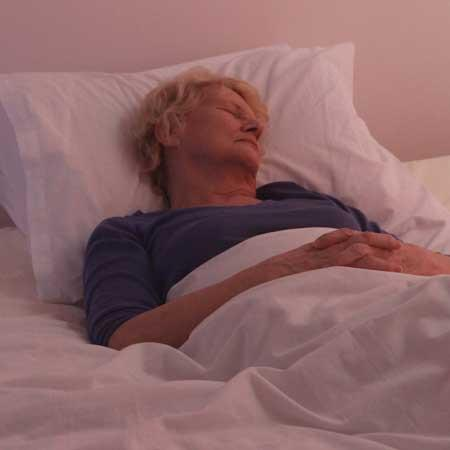 Wonky but Wonderful™ Adult Reflux Bed Wedgehog® - The Wedgehog®