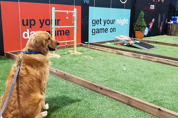 Outdoor Retailer Summer Market 2018 - dogs