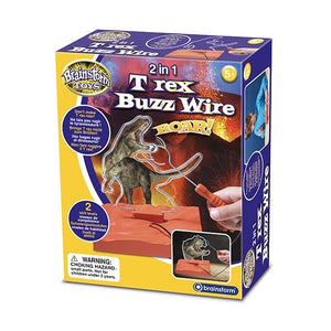 2 in 1 T-Rex Buzz Wire Game Toys Brainstorm