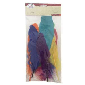 DIY Colourful Feathers Dress Up Not specified