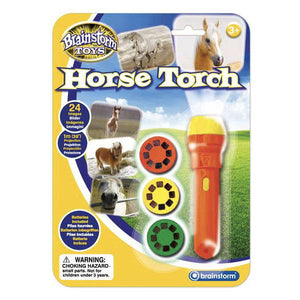 Horse Torch and Projector Toys Brainstorm