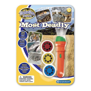 Most Deadly Torch & Projector Toys Brainstorm
