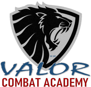 Valor Personal Defense Systems