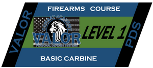 Level 1 Basic Carbine