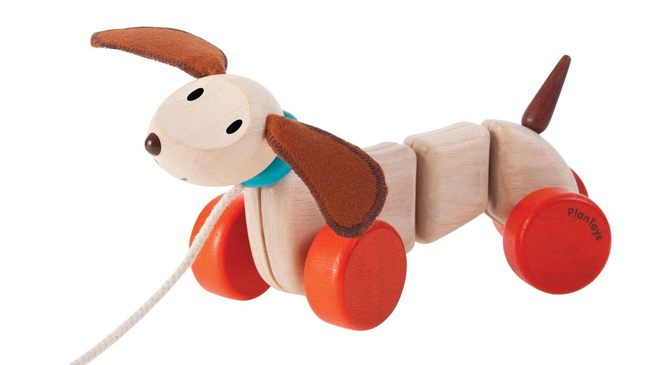 Plan Toys -PULL ALONG DOG