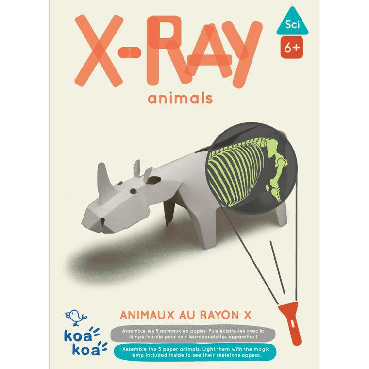 Koa Koa - X Ray Animals activity kit
