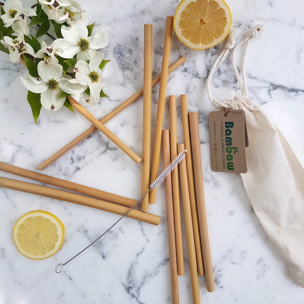 Organic Bamboo Straws - 12 Pack - Unik by Nature