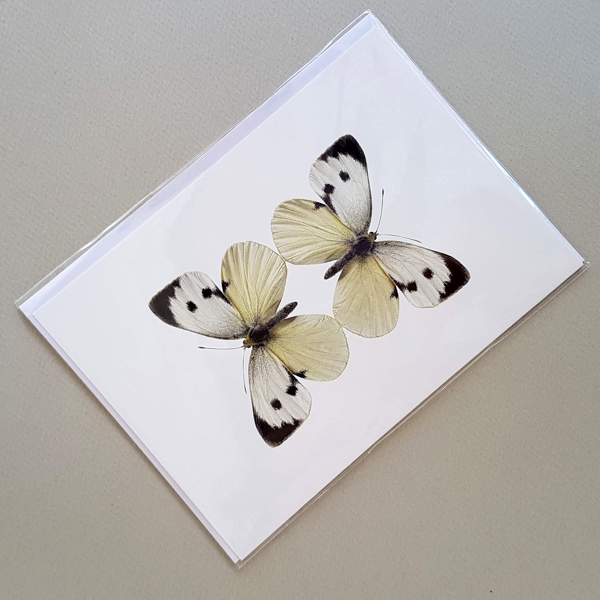 Liljebergs Macro Photography Greeting Card with Envelope Two White Butterflies - Unik by Nature