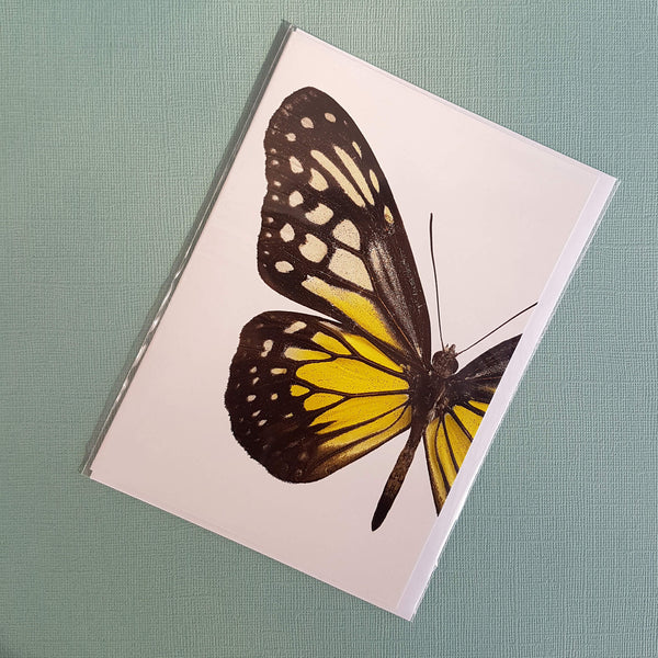 Liljebergs Macro Photography Greeting Card with Envelope Yellow Butterfly - Unik by Nature
