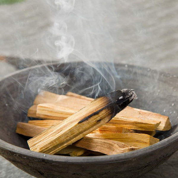 Van Verre Holy Wood Incense or Palo Santo Size Small - Unik by Nature