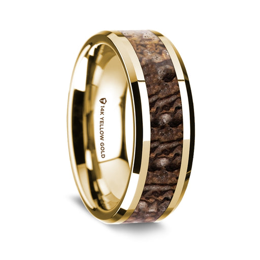 14K Yellow Gold Beveled Edge Band with Brown Dinosaur Bone Inlay - 8 mm