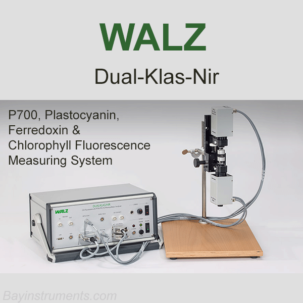 DUAL-KLAS-NIR P700, Plastocyanin, Ferredoxin & Chlorophyll Fluorescence Measuring System, Walz Fluorometers and Photosynthesis Equipment - Bay Instruments, LLC