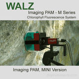 Walz Imaging PAM M Series, Walz Fluorometers and Photosynthesis Equipment - Bay Instruments, LLC