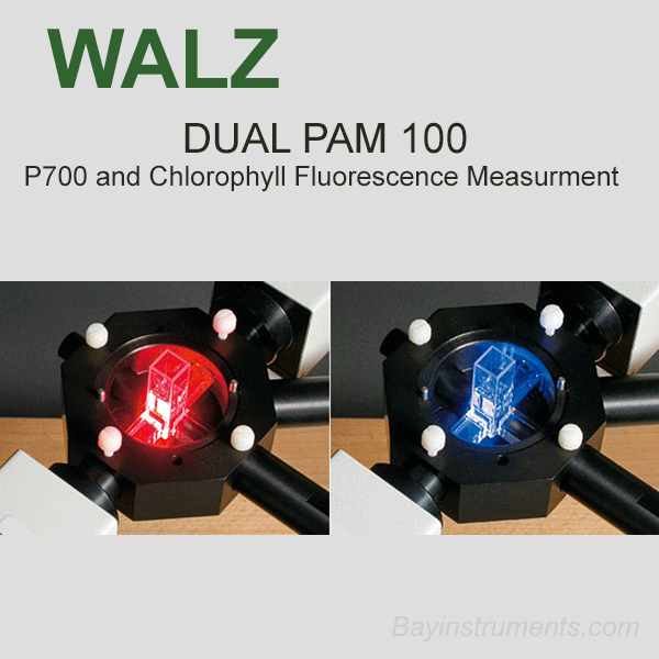 Walz DUAL-PAM-100 P700 and Chlorophyll Fluorescence Measuring System, Walz Fluorometers and Photosynthesis Equipment - Bay Instruments, LLC