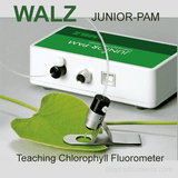 Walz JUNIOR-PAM Teaching Chlorophyll Fluorometer, Walz Fluorometers and Photosynthesis Equipment - Bay Instruments, LLC