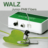 Walz Junior-PAM Fibers (Light Guide), Walz Fluorometers and Photosynthesis Equipment - Bay Instruments, LLC