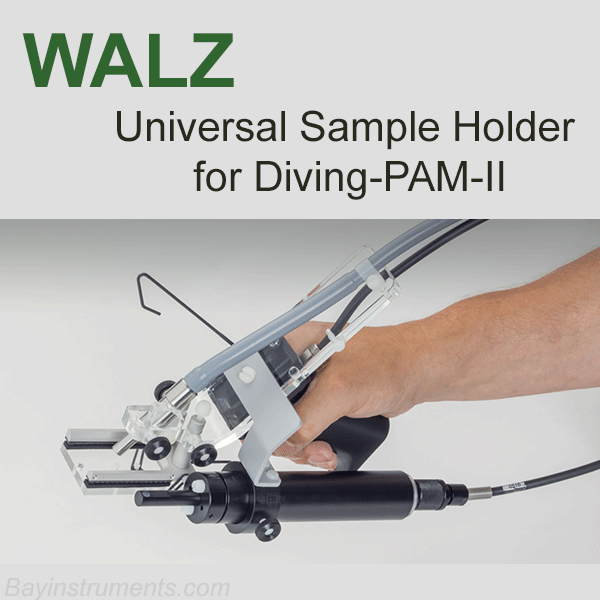 Walz DIVING-USH Universal Sample Holder, Walz Fluorometers and Photosynthesis Equipment - Bay Instruments, LLC