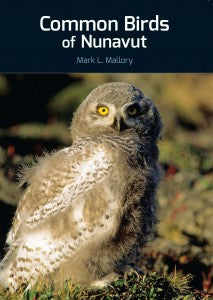Kappianaqtut : Strange Creatures and Fantastic Beings From Inuit Myths and Legends
