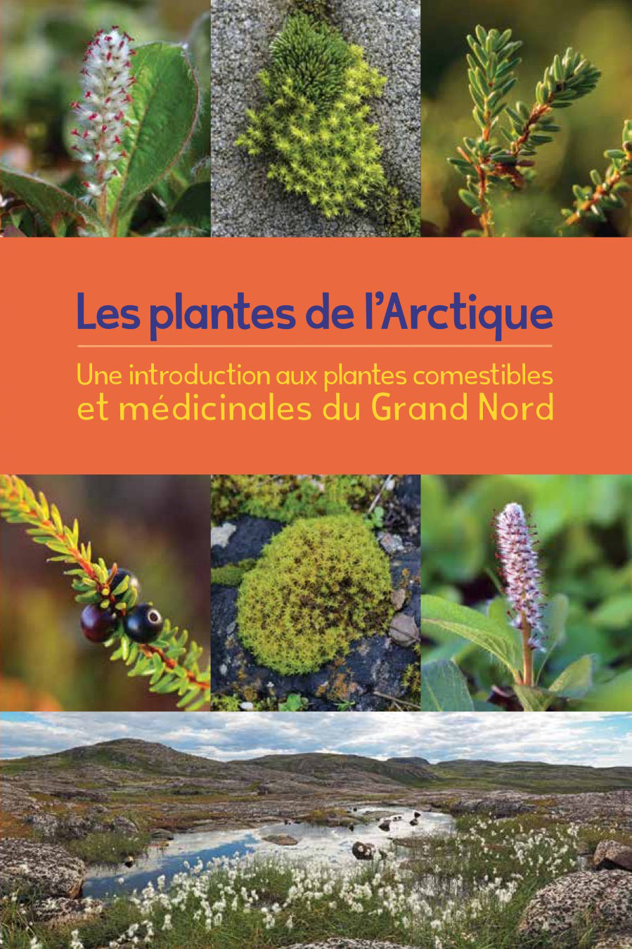 Arctic Plants : An Introduction to Edible and Medicinal Plants of the North