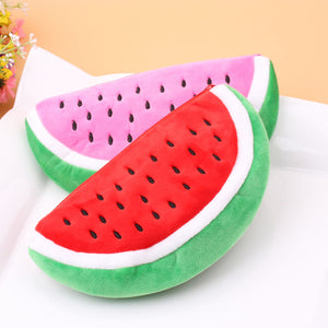 Travel: Watermelon Coin Bag Purse Wallet