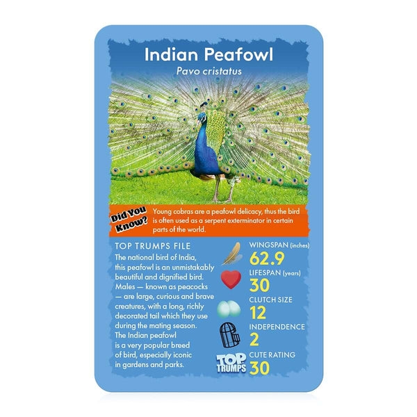 Birds of the World Top Trumps - Top Trumps USA