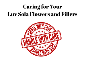 Caring for Your Luv Sola Flowers and Fillers