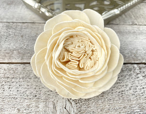 Sola Wood Flowers - Bella Rose - Luv Sola Flowers