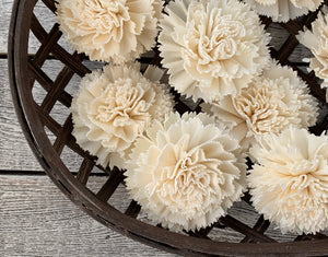 Sola Wood Flowers - Carnation - Luv Sola Flowers